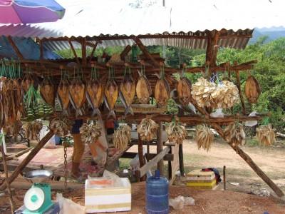 Trockenfisch 2